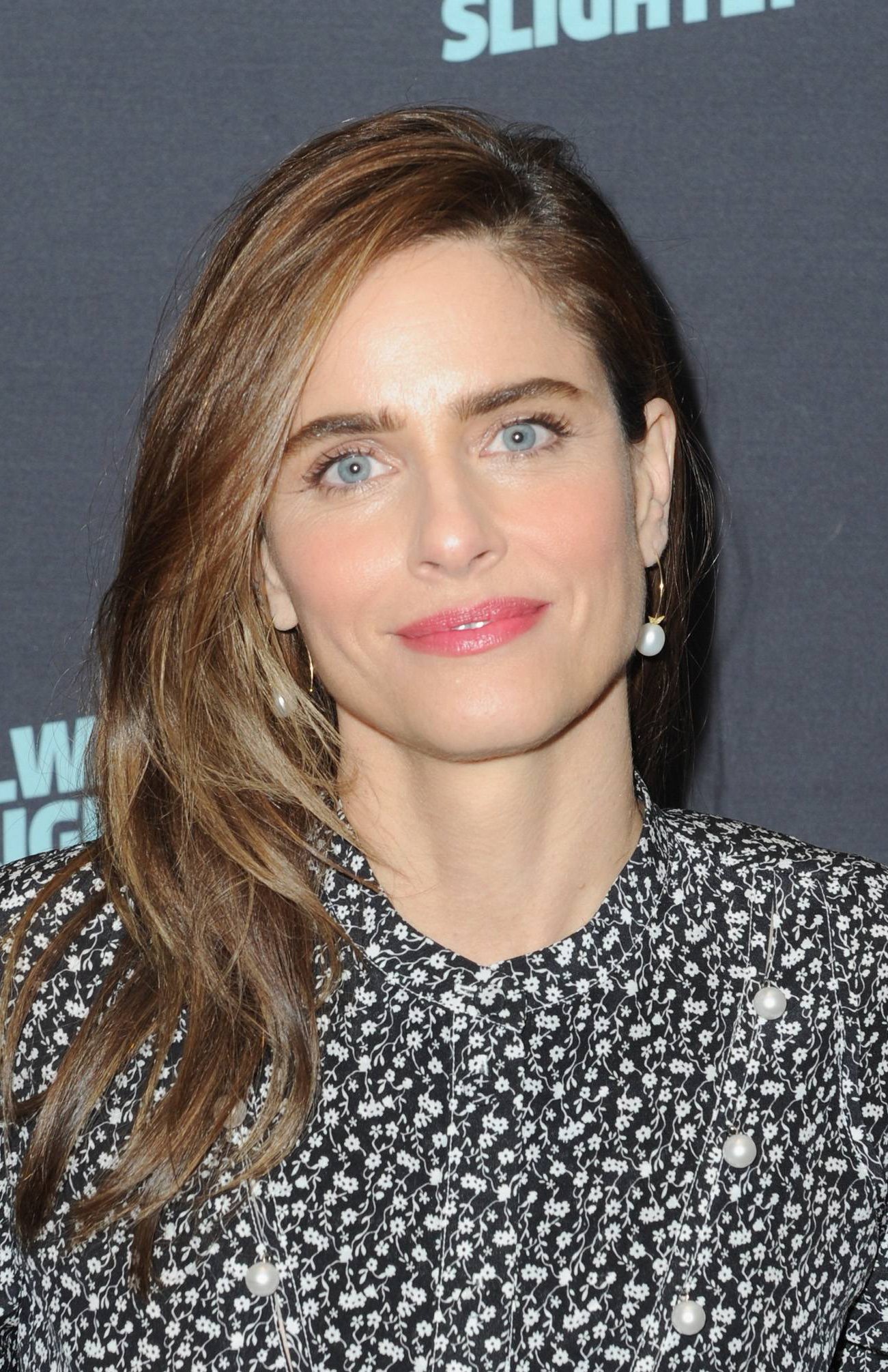 Amanda Peet Nude Photos